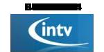 Bufo_InTV